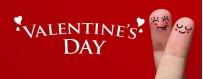 DéguiShirt.fr - Costumes & T-shirts déguisement thème Saint-Valentin