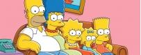DéguiShirt.fr - Costumes & T-shirts déguisement thème Les Simpson